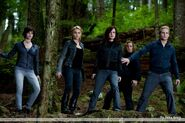 The Cullens forest Eclipse
