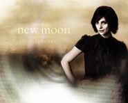 Alice-new-moon-7355070-1280-1024