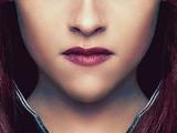 Galeria: Edward i Bella