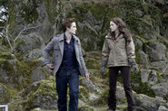 Twilight (film) 25