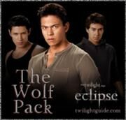 180px-Wolf-1-pack-eclipse
