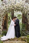 271px-Breakingdawnwedding