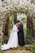 Breakingdawnwedding
