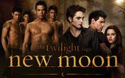 The-twilight-saga-new-moon-powerpoint-background-14.jpg