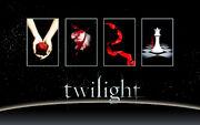 Twilight Saga Books Wallpaper by miratio.jpg