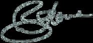 Benjamin Horne signature