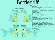 Bottegriff Reference Sheet