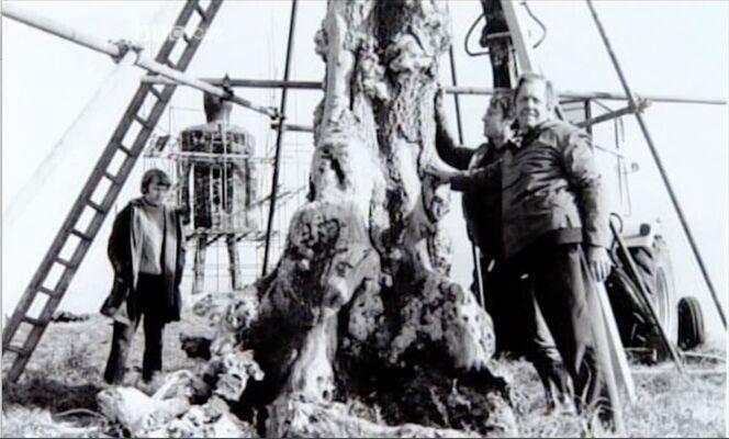 Semaus flannery by dead tree.jpg