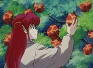 Azalyn picks some fruits