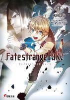 Fate strange fake novel Vol 4