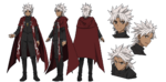 Shirou Kotomine A-1 Pictures Fate Apocrypha Character Sheet1
