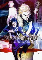 FateStrangeFakeVol3Manga
