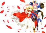 Saber and castor cover