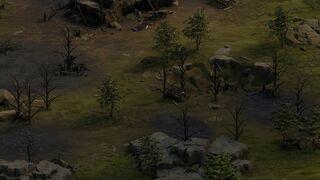 BKG AR 0310 Conquest Stash.jpg