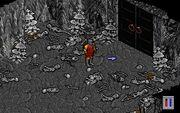 Ultima VIII mysterious double doors.jpg