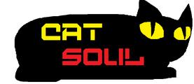 Cat Soul Reboot.png