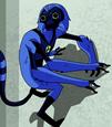 Macaco-Aranha B10HT