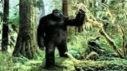 Art Bell with Robert Morgan and Bugs - Bigfoot - June 5, 2001