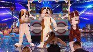 Britain's Got Talent 2019 Disco Dogs Surprise Full Audition S13E08