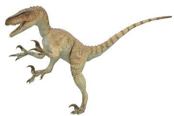 Utahraptor020.jpg