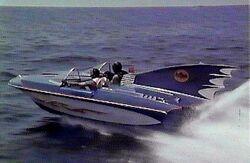Batboat 2.JPG.jpg