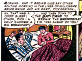 Homosexuality in the Batman franchise
