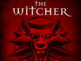 The Witcher (video game)