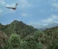 GoldRagon Flight