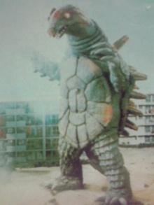 Queen Tortoise