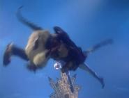 Inculas Extraordinary Jumper