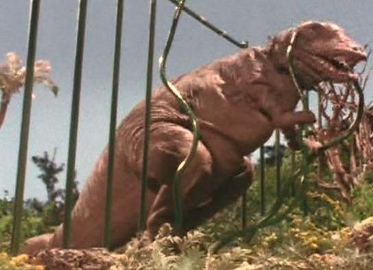 Gorgosaur