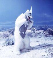 Snowgon3