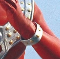 Taro bracelet
