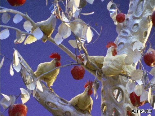Planet Apple Chicken