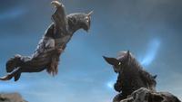 Gomora VS Bemstar