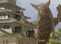Gomora Osaka