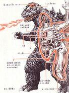 Godzilla anatomy