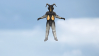 Zetton Flight