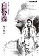 Tiga novel cover