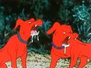 Red-Dogs-Izenborg-February-2021-01.jpg