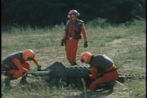 Triceratops (Koseidon)