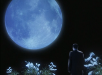 Seiji in the moon