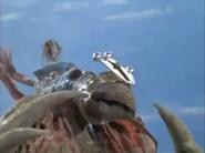 King Bracelet Muzzle