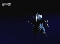 Cherubim Flight