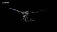 Geranda Flight