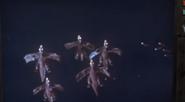 Bird monster migrate
