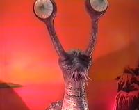 1991 Namegon