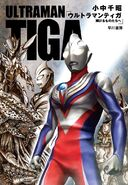 Tiga novel cover 2