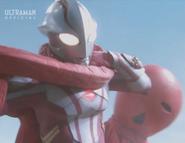 Nova Right Arm Extending Whips