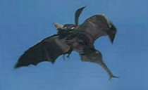 Scorpiss flying.png